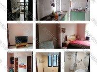出租凤凰小区1室1厅1卫43.6平米800元/月住宅